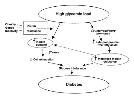 Pathophysiology of type 2 diabetes mellitus (source)