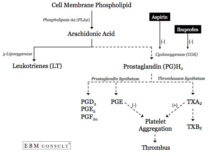 Mechanism of action of ibuprofen (source)