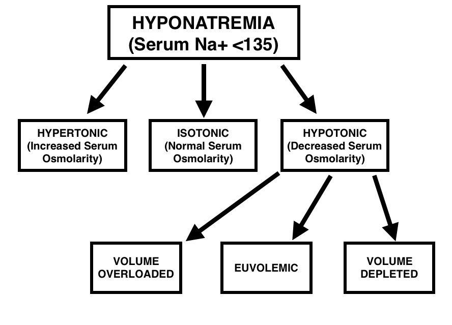 Overview of characterizing hyponatremia.