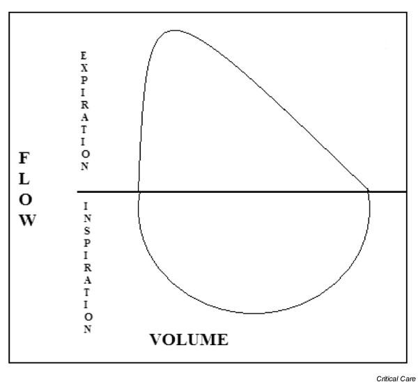 The traditional flow/volume loop has no axis dedicated to time. What is the implication of this? (source)