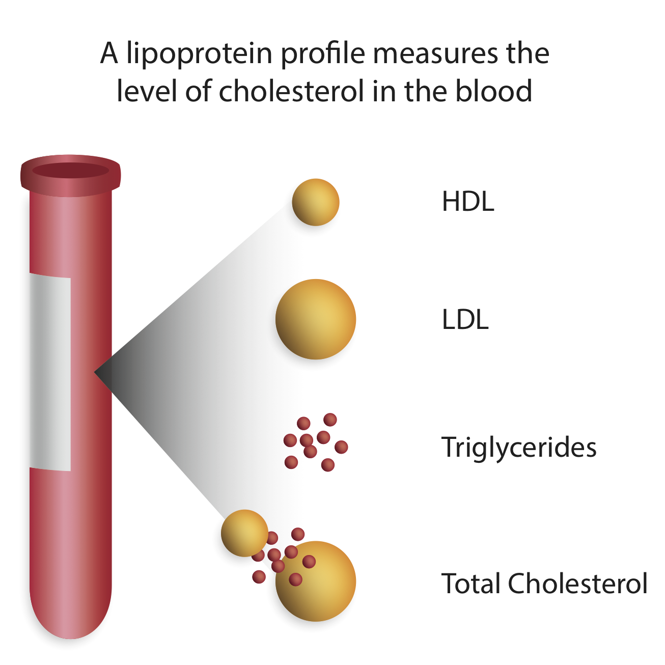 A few different values are reported in a traditional lipid panel. This page will help decipher what these actually mean (source)