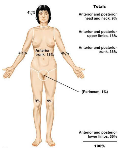 The dermatological system can also sometimes be involved when considering the cause of chest pain (source)